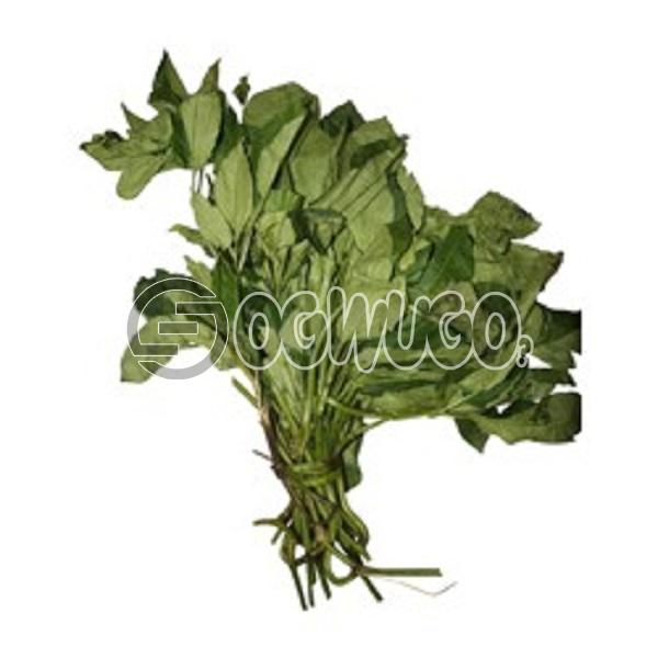 1 head of Utazi Leaves.: unable to load image