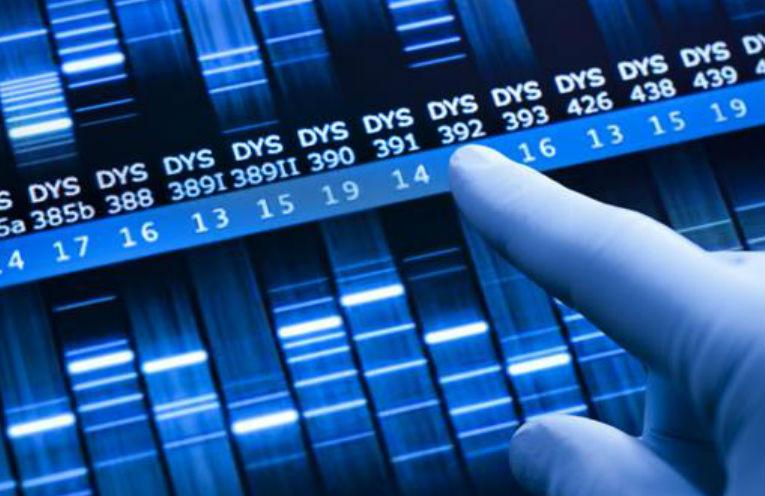 Blockchain Genomics