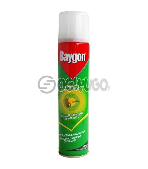 300ml Baygon Insecticide Aerosol spray; best for killing both crawling and flying insects.