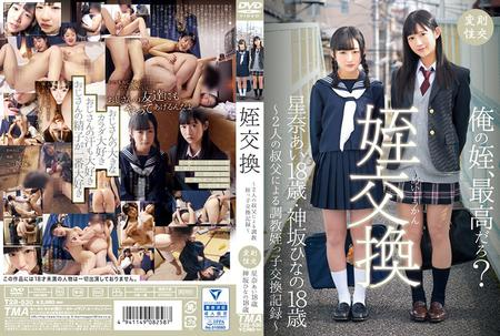 [T28-530] Hoshina Ai, Kamisaka Hinano - Niece Fucking A Video Record Of Niece Swapping Breaking In Sex Between 2 Uncles Ai Hoshina Hinano Kamisaka