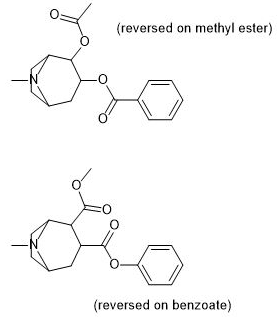 List of cocaine analogues