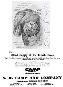 2e7f46d42 This 1932 ad by the S.H. Camp Company was the first to denote cup size and band  measurement