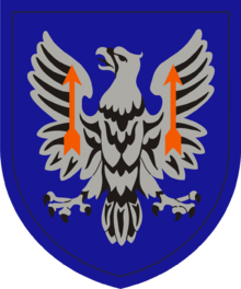 11th Theater Aviation Command